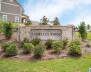 3036 Camellia Ridge Ct, Pelham image