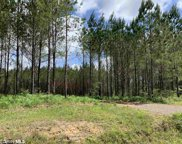 31810 Happy Hollow Rd, Robertsdale image