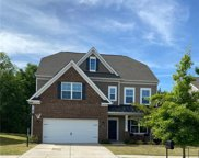 13528 Canterbury Castle  Drive, Charlotte image
