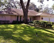 1130 Mill Creek Road, Bradenton image