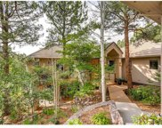 256 Lead Queen Drive, Castle Rock image