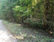 LT 10 Bear Paw Trail, Blue Ridge image