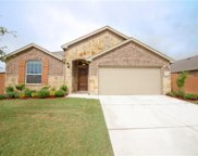 4001 Indian Paintbrush Lane, Heartland image