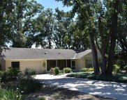 4151 Lake Forest Street, Mount Dora image