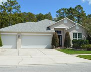 12339 Cape Sound Cove, Orlando image