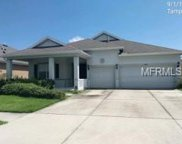 20015 Oakflower Avenue, Tampa image