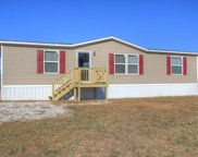 1559 Jack Smith Road, Cave City image