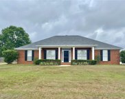 9562 White Castle Road, Mobile image