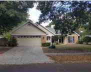320 Silver Pine Drive, Lake Mary image