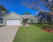 3045 Pine Forest Drive, Palm Harbor image