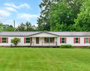 345 Tom Link Rd, Cottontown image