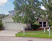 5020 Whistling Pines Court, Wesley Chapel image