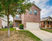11207 Blue Fax Field, Helotes image