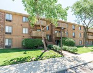 718 Rodenburg Road Unit 308, Roselle image