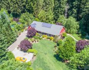 15347 Armstrong Woods Road, Guerneville image