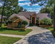 3031 Homestead Oaks Drive, Clearwater image