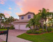10143 Mimosa Silk DR, Fort Myers image