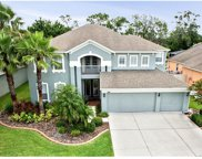 7048 Palmetto Pines Lane, Land O Lakes image