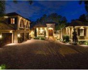 9832 Lake Louise Drive, Windermere image