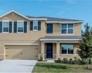 9628 Troncais Circle, Thonotosassa image