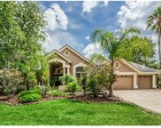 4075 Presidents Boulevard, Palm Harbor image