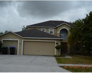 2566 Palmetto Ridge Circle, Apopka image