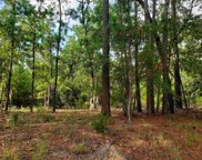 TBD Whispering Woods Rd., Conway image