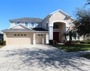 11520 Harlan Eddy Court, Riverview image