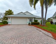 13470 Wild Cotton CT, North Fort Myers image