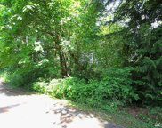 4 Lot 4 East Lost Lake Rd, Snohomish image