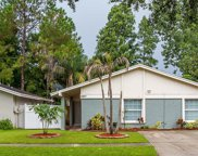 4807 Grove Point Drive, Tampa image