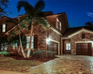 5310 Candler View Drive, Lithia image