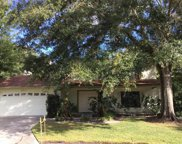 15713 Pinto Place, Tampa image