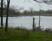 1121 Crystal Lake Drive, Wills Point image