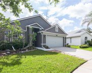 5658 Tughill Drive, Tampa image