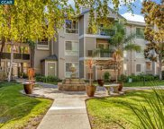 2550 Oak Rd # 117, Walnut Creek image