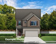 397 Willow Tree  Drive Unit #62, Rock Hill image