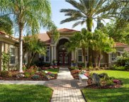 17211 Talence Court, Tampa image