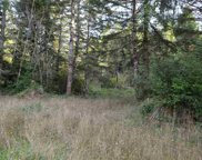 Bell Hole Loop #41, Crescent City image