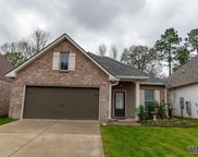 6242 Tiger Trace Ave, Baton Rouge image
