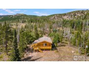 67 Cusabo Ct, Red Feather Lakes image