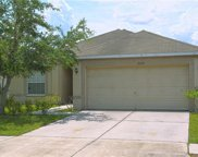 8428 Carriage Pointe Drive, Gibsonton image