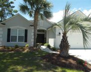 2901 Whooping Crane Dr., North Myrtle Beach image