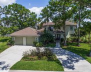 1411 Water Lilly Lane, Kissimmee image