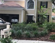 9416 Willow Cove Court, Tampa image