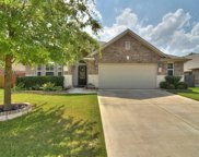 1480 Coldwater Hollow, Buda image