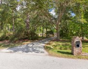 2865 MANDARIN MEADOWS DR South, Jacksonville image