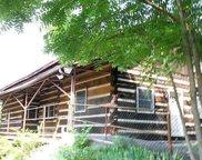 925 Hwy 25 32, White Pine image