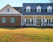 519 Bluff View Dr, Pegram image