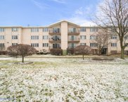9750 Koch Court Unit 3G, Orland Park image